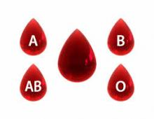 Feline blood groups neonatal isoerythrolysis